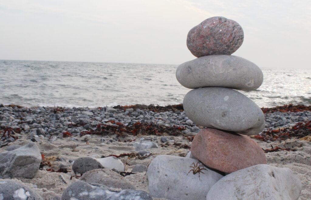 Mindfulness Baseret Stress Reduktion MBSR Sten stablet på strand. Edderkop kravler op.